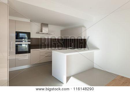 interior of a modern apartment, domestic kitchen