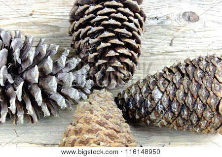 Four Big Pinecones On Old Wooden Table