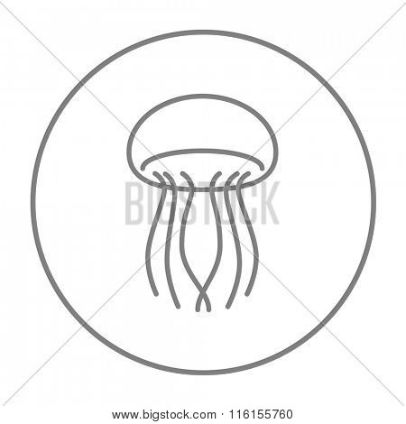 Jellyfish line icon.