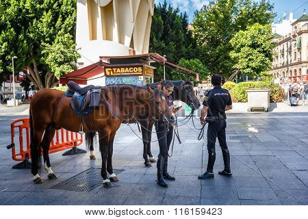 Mounted police. Seville, SPAIN - September 10, 2015