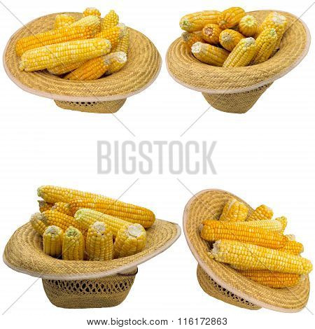 Hat With Corn.