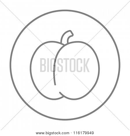 Plum with leaf line icon.
