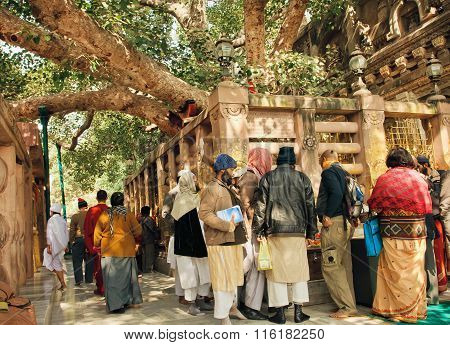 Many People Of Different Religions Watching The Holy Tree Of Gautama In Bodhgaya, India