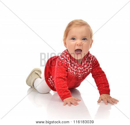 Infant Child Baby Girl Crawling  In Red Sweater Yelling Laughing
