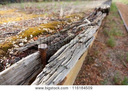 Disused Railway Platform
