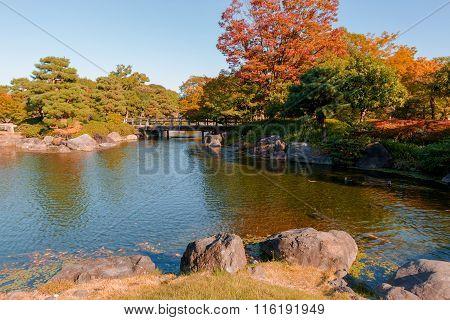 Japanese Garden In Autumn / Daylight.