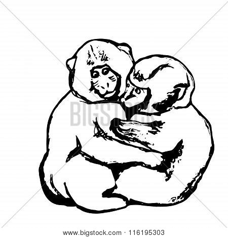 A Couple Of Monkeys (graphics)