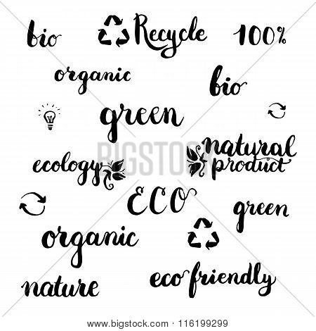 Set of handwritten brushpen lettering and calligraphy ecology word: green organic eco ecology natural product bio recycle with elements. Template for logo label and badge.