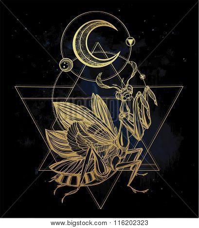 Paraying Mantis iin sacred sign.