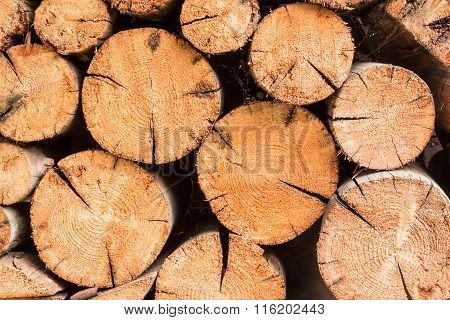 Firewood In Stack.