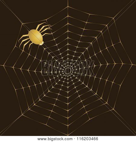 Cobweb Of Gold And Spider