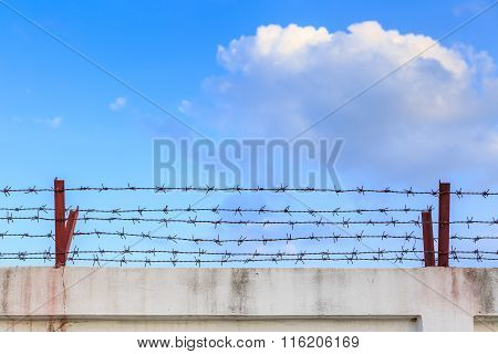 Barbed Wire Wall On Blue Sky