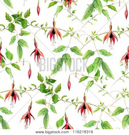 Pink fuchsia flowers. Repeating floral pattern. Water color