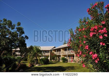 beach resort