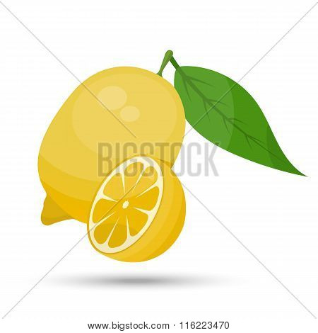 Single vector lemon