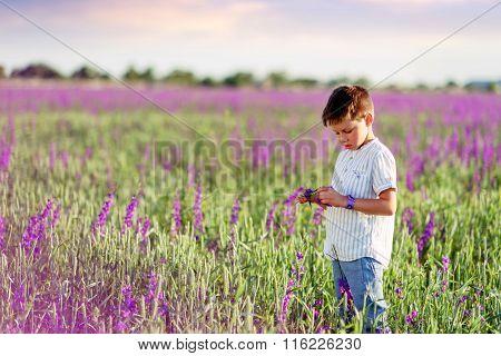 Little Boy On The Lavender Field