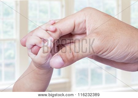 Baby Hand Grasping The Father Finger