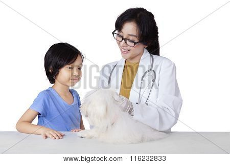 Child Carrying Her Dog To The Veterinarian