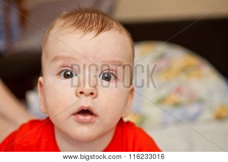 Portrait Of Thoracic Baby, Close-up, Shallow Depth Of Field