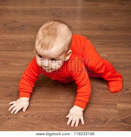 Baby Crawling On The Wooden Floor