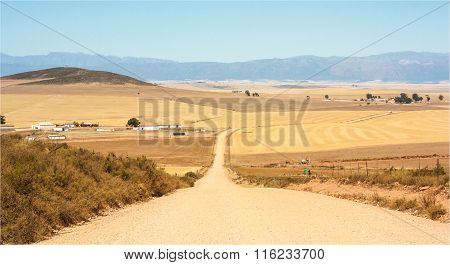 Dirt Road. Gravel Road into the distance.