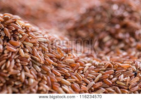 Red Rice Background Image