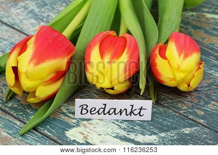 Bedankt (which means thank you in Dutch) with colorful tulips on rustic surface