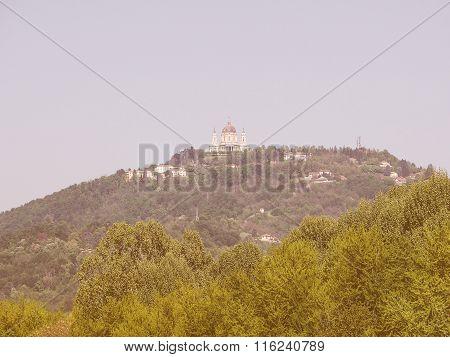 Turin Hills Vintage