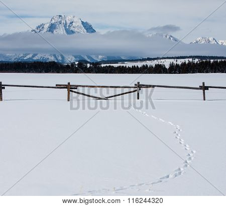 Snowy Mountain And Wooden Ranch Fence