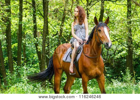 Beautiful Young Girl On Horse