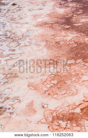 Close Up  Of Salt Marsh In Salinas  In Sal Cape Verde - Cabo Verde Islands