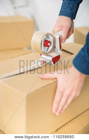 Pleasant man packing the boxes