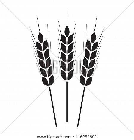Wheat ears or rice icon or sign. Agricultural symbol. Vector illustration.