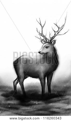 Winter Snow Forest Black And White Monochrome Deer With Big Horns