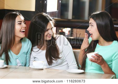 Beautiful girls gossip in cafe