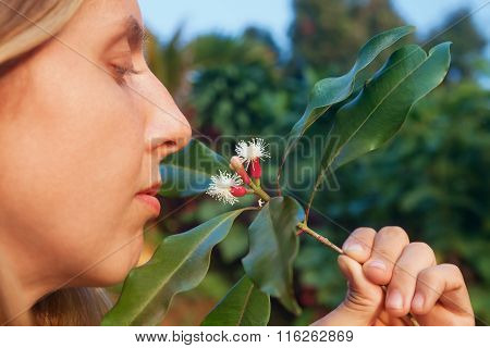 Woman Sniffing Cloves Raw Sticks And Flowers