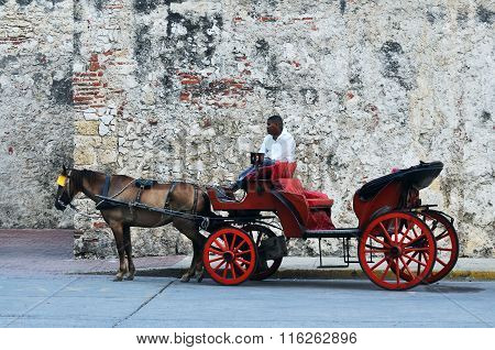 Horse Drawn Touristic Carriages