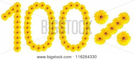 Figures 100% Of The Letters Written By Flowers