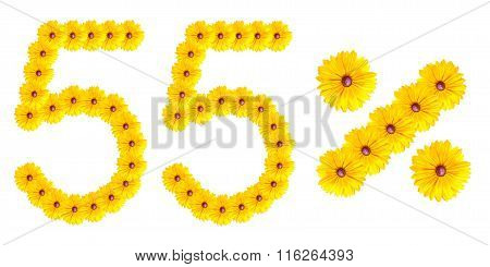 Figures 55% Of The Letters Written By Flowers