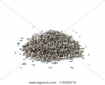 Caraway Seedsl Isolated On White Background
