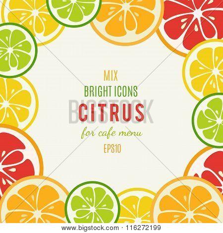 Grapefruit, lime, lemon and orange vector background