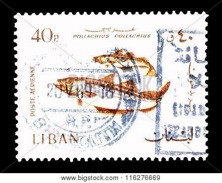 Lebanon 1968