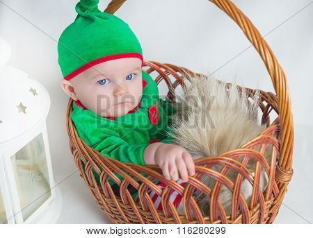 Baby Boy Dressed As A Gnome Sitting In Basket