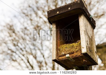 Opened Birdhouse With Old Nest