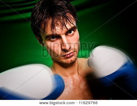 Blow Of The Boxer