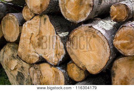 Heap firewood