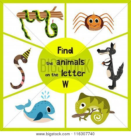 Funny Learning Maze Game, Find All 3 Of Cute Wild Animals To The Letter , Forest Predator, The Wolf,
