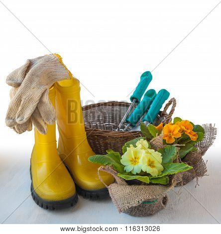 Garden Still Life With Primrose, Boots And Garden Tools