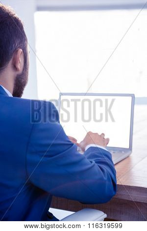 Rear view of male professional working on laptop in brightly lit office