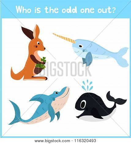 Cartoon Colorful Background Of Education To Find 1 Extra Pet Kangaroo Of The Inhabitants Of The Seas